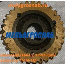 Шестерня (венец) в большой редуктор ТММ-1М