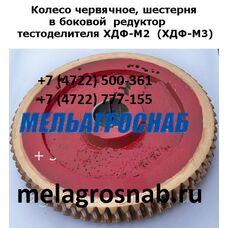 Головка к тестоделителю ХДФ-М2, ХДФ-М3, ХДФ, червячная пара, шестерни на тестоделитель ХДФ М2