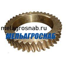 Венец бронзовый на тестоокруглитель Т1-ХТН