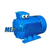 Двигатель к тестомесильной машине ТММ-1М