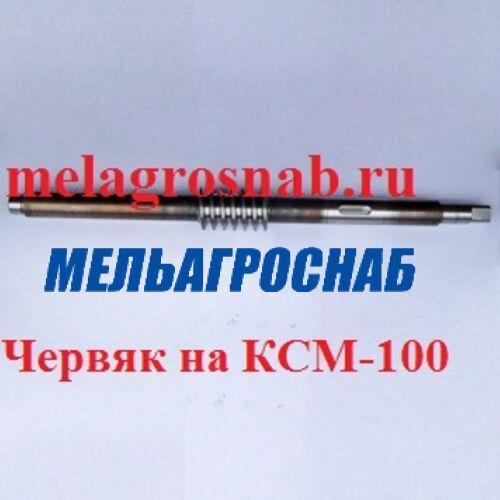 ОБОРУДОВАНИЕ ДЛЯ ХЛЕБОПЕКАРНОЙ И КОНДИТЕРСКОЙ ПРОМЫШЛЕННОСТИ - Червяк на КСМ-100