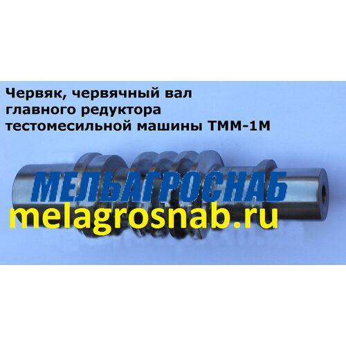 ОБОРУДОВАНИЕ ДЛЯ ХЛЕБОПЕКАРНОЙ И КОНДИТЕРСКОЙ ПРОМЫШЛЕННОСТИ- Червяк, вал червячный на тестомес в главный редуктор тестомеса ТММ-1М