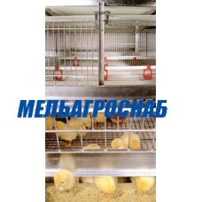 Комплект оборудования напольный для выращивания бройлеров ОПБ