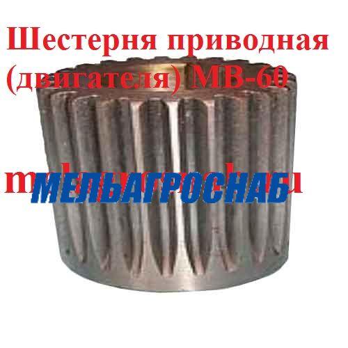 ОБОРУДОВАНИЕ ДЛЯ ХЛЕБОПЕКАРНОЙ И КОНДИТЕРСКОЙ ПРОМЫШЛЕННОСТИ - Шестерня приводная (двигателя) МВ-60