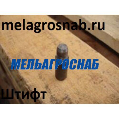 МЕЛЬНИЧНО-ЭЛЕВАТОРНОЕ ОБОРУДОВАНИЕ - Штифт А1-БЗН.01.604