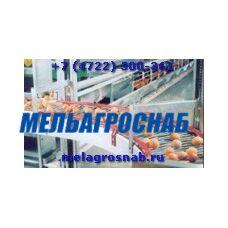 Лифтовая система сбора яиц, с выводом на стол яйцесбора (Украина)