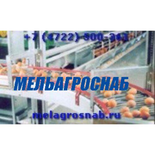 ОБОРУДОВАНИЕ ДЛЯ ПТИЦЕФАБРИК - Лифтовая система сбора яиц, с выводом на стол яйцесбора (Украина)