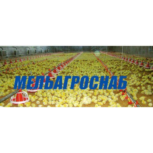 ОБОРУДОВАНИЕ ДЛЯ ПТИЦЕФАБРИК - Автоматическая система управления процессом кормления (Украина)